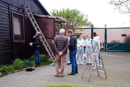 katzenschutzverein geburstag katze frankfurt