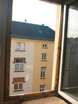 frankfurter katzenschutzverein absicherung f r katzen in wohnung und im haus. Black Bedroom Furniture Sets. Home Design Ideas